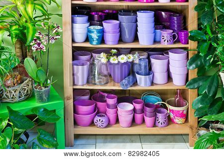 Flowerpots In A Shelf In A Market