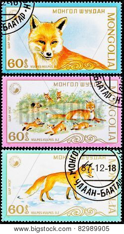 Post Stamps From Mongolia