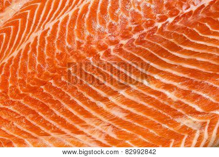 meat fish salmon