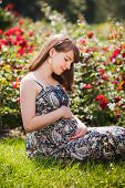 pic of pregnancy  - Young happy pregnant woman relaxing in park outdoors - JPG