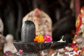 stock photo of shiva  - A small black shiva - JPG