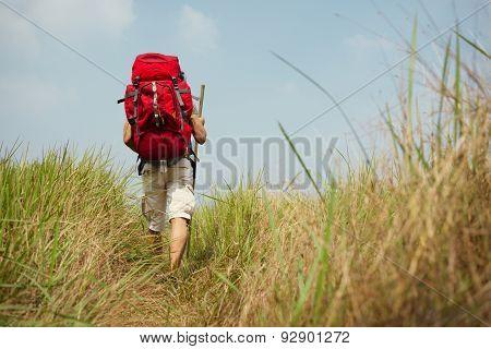 Hiking Through High Grass Field