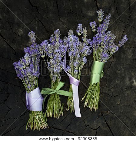 Rural harvest of lavender flowers