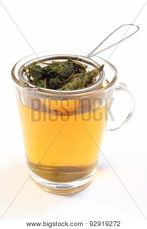 Nettle Brewed In Glass Cup. Isolated On White Background