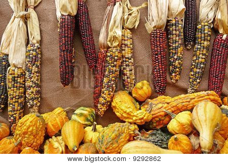 Indian corn and seasonal gourds on a burlap background
