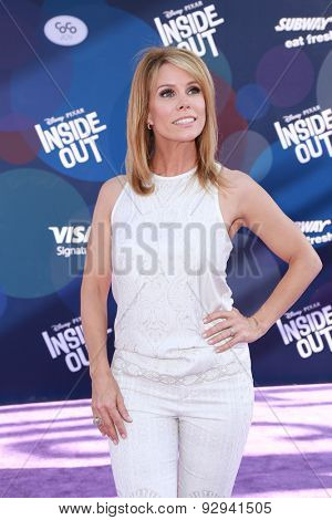 LOS ANGELES - JUN 8:  Cheryl Hines at the