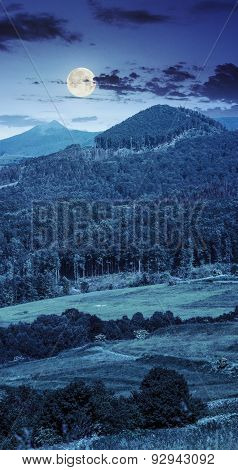 Meadow In Mountains  At Night