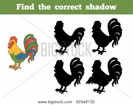 Find The Correct Shadow (rooster)