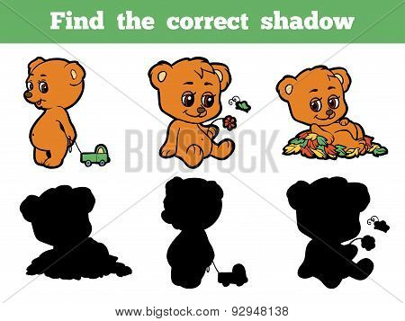 Find The Correct Shadow (bears)
