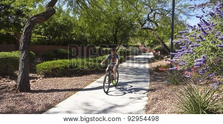 A Boy On A Bike Rides In Summerlin