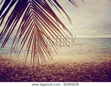 Tropical Beach With Stylized Filter In Rangiroa, French Polynesia