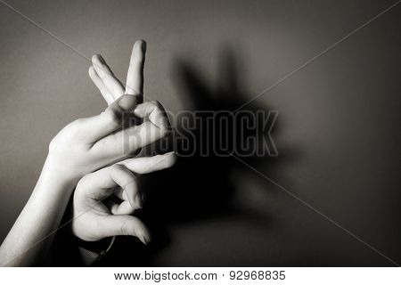 Hands gesture like hare on gray background