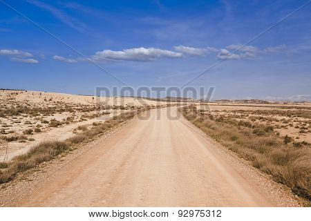 track and arid landscape in Bardenas Reales Spain