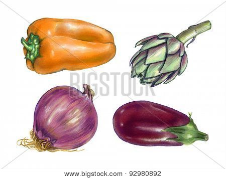 Bell pepper, artichoke, onion and eggplant watercolor. Original illustration.