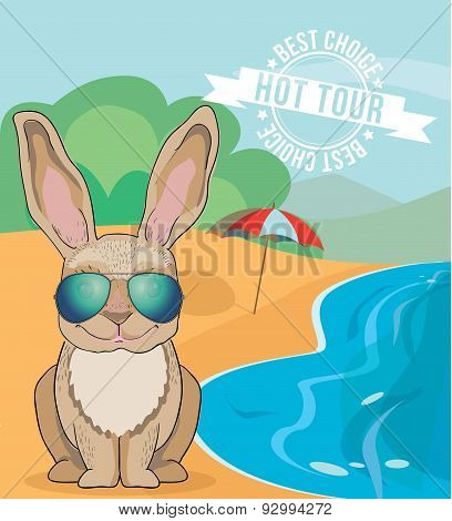 Cartoon Character Of Cute Rabbit Wearing Aviator Sunglasses Sunning On The Beach Of The Ocean.