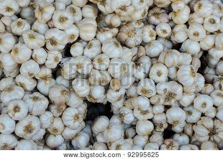 Set of White Garlic Sale in the Market