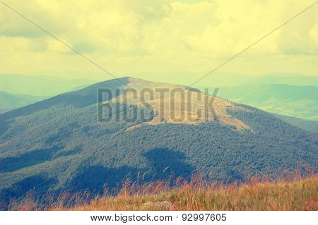 field on top of the mountain filter