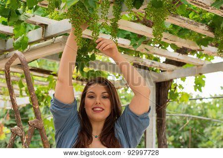 Beautiful Caucasian Farmer Girl In The Vineyard