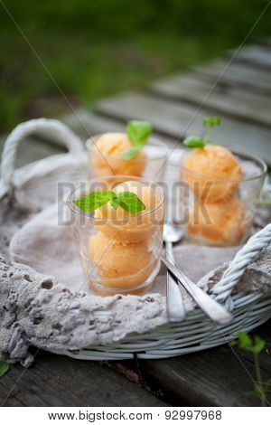 Homemade sorbet with tropical fruits and mint