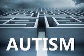 picture of autism  - autism against big 3d maze under clouds - JPG