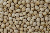 picture of chickpea  - Chickpeas background - JPG