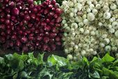 stock photo of radish  - Radishes and Onions and spinach in a vegetable market