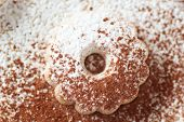 picture of sprinkling  - Closeup of an italian canestrelli biscuit sprinkled with icing sugar and cocoa power - JPG