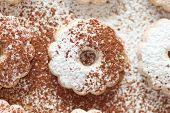 pic of icing  - Closeup of an italian canestrelli cookie covered with cocoa power and icing sugar - JPG