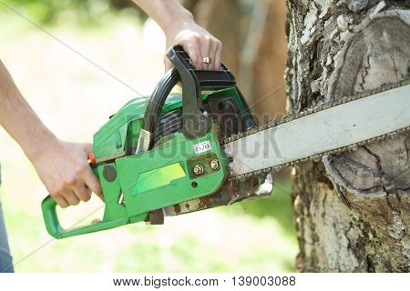 Chop wood Chainsaw. Close-up professional chainsaw blade cutting log of wood