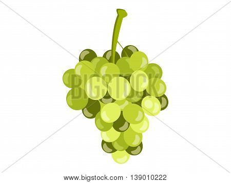 Realistic green grapes isolated on white background. Vector illustration.