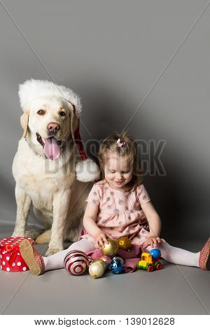 Happy little girl with smiling funny face playing with decoration balls near labrador dog pet in santa claus hat in studio on grey background