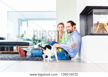 Couple sitting in living room floor playing with dog