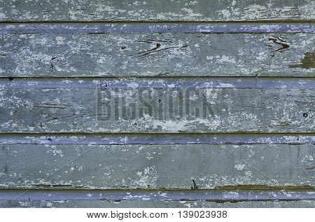 Weathered and scratched old rustic wood natural gray and turquoise paint wall plank pattern with natural aged and grunge look for background. Surface prepared for new paint.