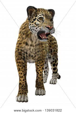 3D Rendering Big Cat Jaguar