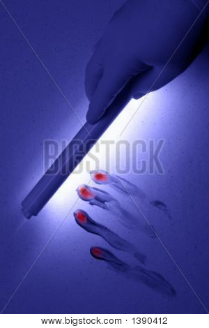 Crime Scene under UV Black Light Wand