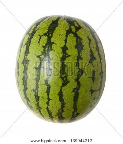 A single green water melon isolated on a white background