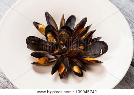 Cooked mussels on a plate. Black shell and yellow meat. Natural food that looks appetizing. Simple recipe of seafood.