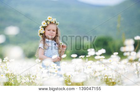 Beautiful little girl with long curly blond hair,cute smile,in a light blue denim overalls,a white wreath of fresh flowers,holding hands in a flower field daisies,enjoying nature in a flowering meadow white in summer