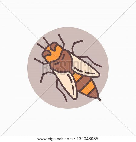 Honey bee flat icon. Vector apis or honeybee colorful sign. Bee concept symbol or logo element