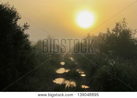 country road at sunrise, Novgorod oblast ,Batetskiy rayon, Russia