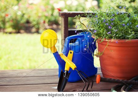 Garden accessories. Watering can, shovel, rake for gardening