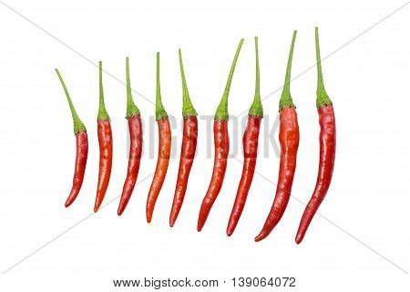Red Chili Cayenne With Green Stick Vary Size