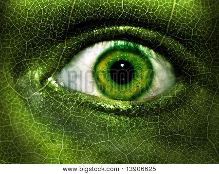 Green Eye Camouflage