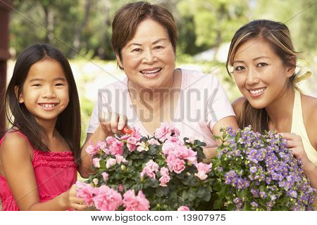 Granddaughter With Grandmother And Mother Gardening Together