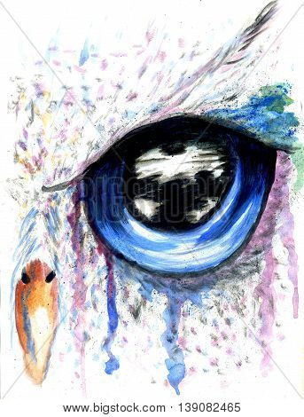 Owl Eye Art
