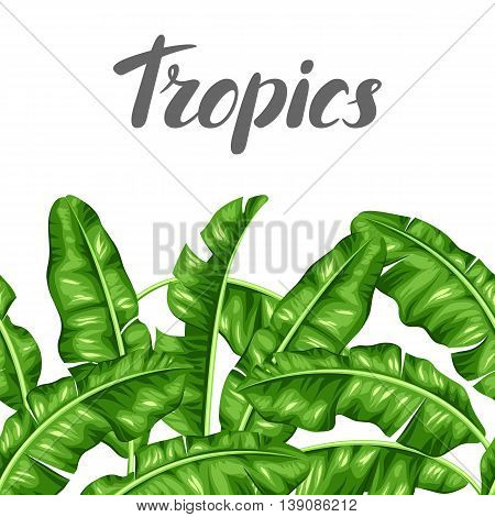 Seamless border with banana leaves. Image of decorative tropical foliage.
