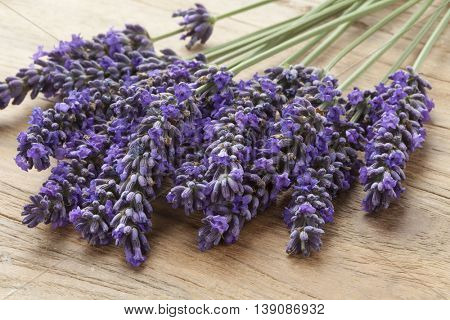 Fresh purple lavender flowers on the table