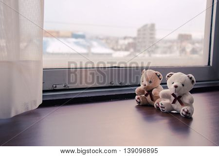 Lovely Couple Bear Sit Together Look Out Window