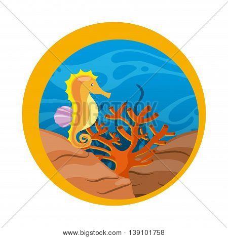 Sea life concept represented by sea horse and coral icon over seal stamp. Colorfull illustration.