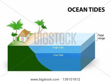 Ocean Tides. Tidal Range. The tidal range is the difference in sea level between low tide and high tide